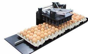 Egg Flex 30